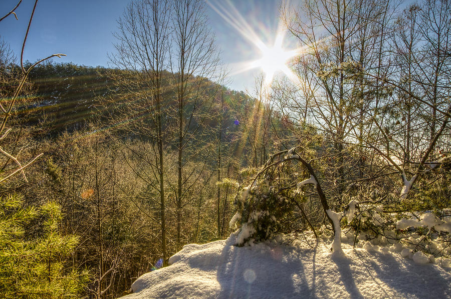 Sun Rays Photograph - Sunny Winter by Jay Huron