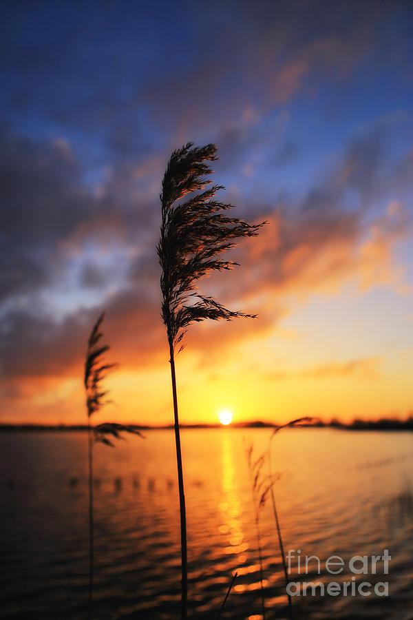 Sunrise Photograph - Sunrise @ The Lake by LHJB Photography