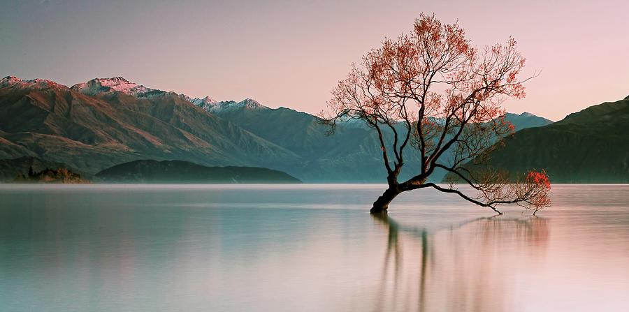 Sunrise At Lake Wanaka Photograph by Steve Daggar Photography