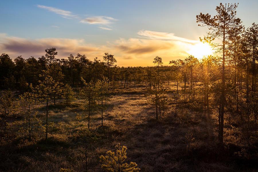 Finland Photograph - Sunrise At Linnaistensuo by Janne Mankinen