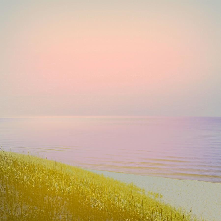 Lake Michigan Photograph - Sunrise Dune by Michelle Calkins