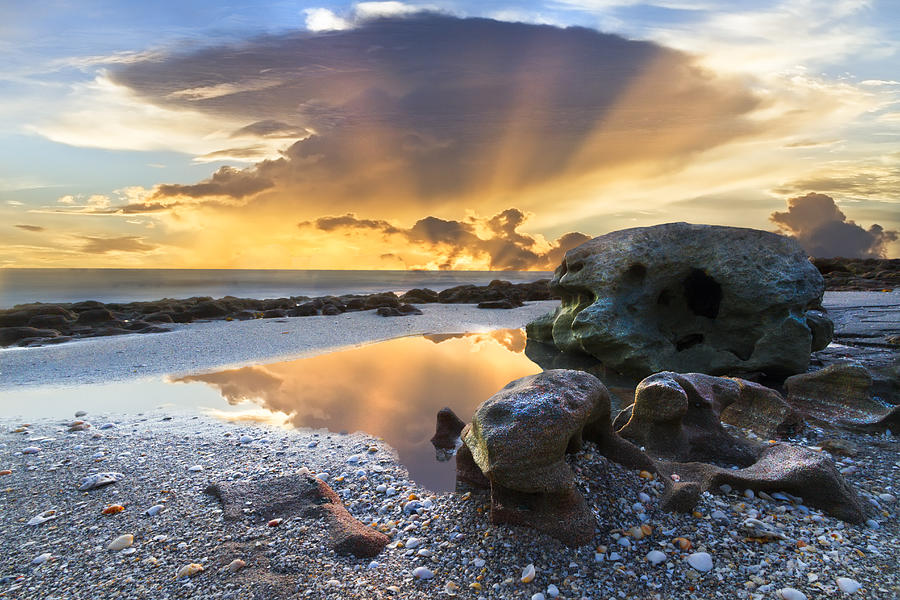 American Photograph - Sunrise Explosion by Debra and Dave Vanderlaan