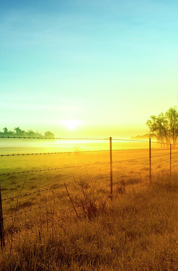 Sunrise Fence Line Central Indiana Photograph by Michael Huddleston / Artsyfartsytbarn