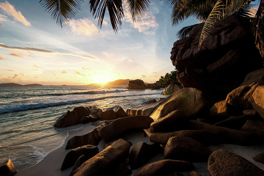 Sunrise Framed By Palm Trees And Rock Photograph by Pitgreenwood