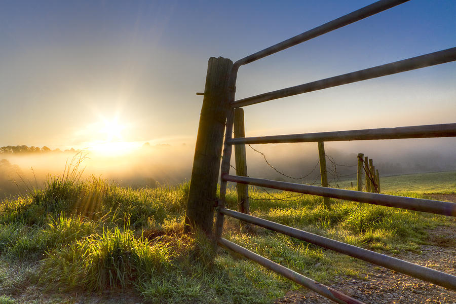 Appalachia Photograph - Sunrise  Gate by Debra and Dave Vanderlaan