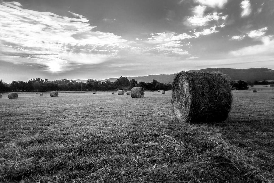 Black And White Photograph - Sunrise Hay Bales by Bob King