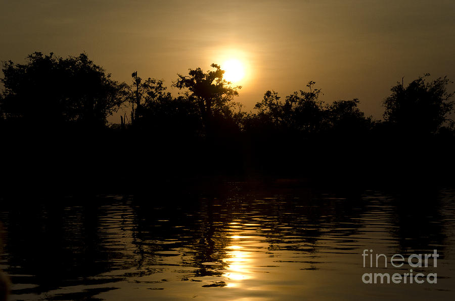 Brasil Photograph - Sunrise In Amazon by Ricardo Lisboa