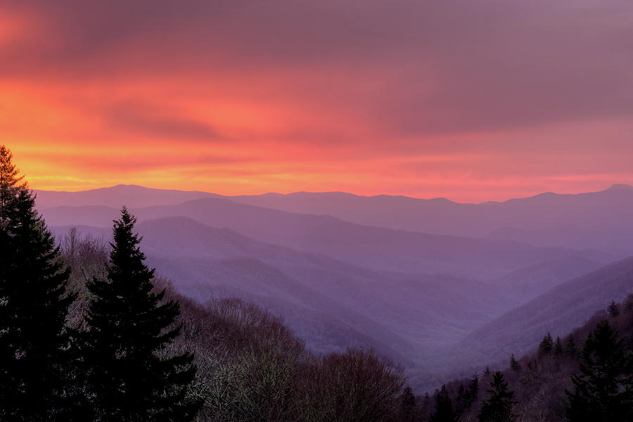 Sunrise In The Smoky Mountains Photograph by Dennis Govoni