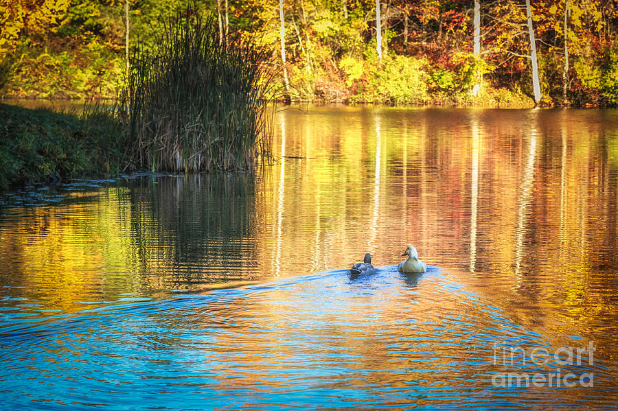 Sunrise Lake Rendezvous by Sophie Doell