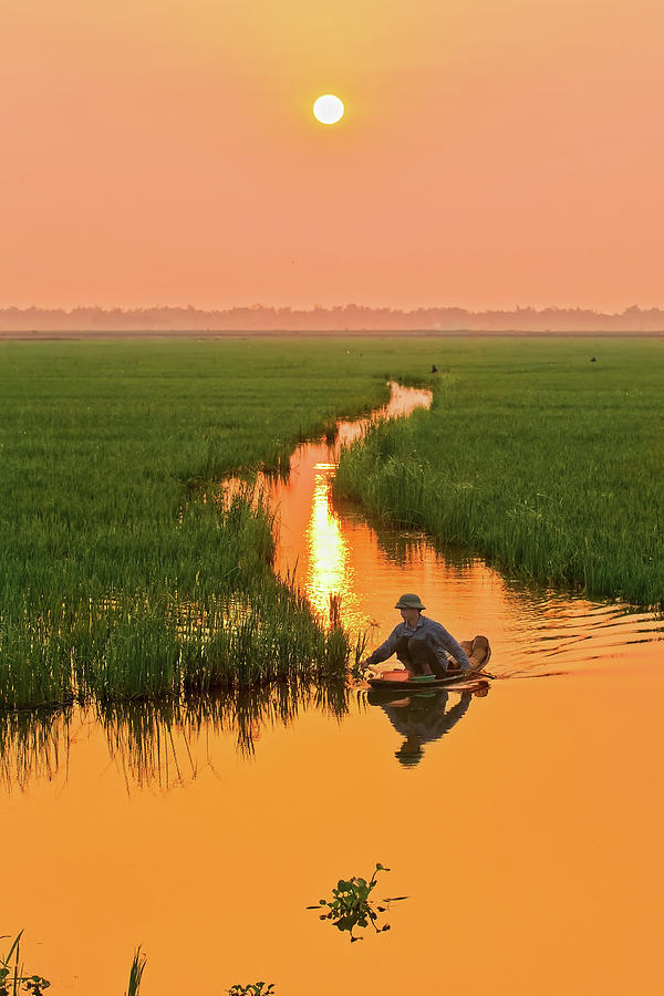 Sunrise On The Field Photograph by Long Hoang