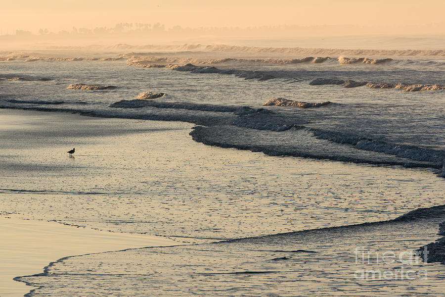 Sunrise on the Ocean by John Wadleigh