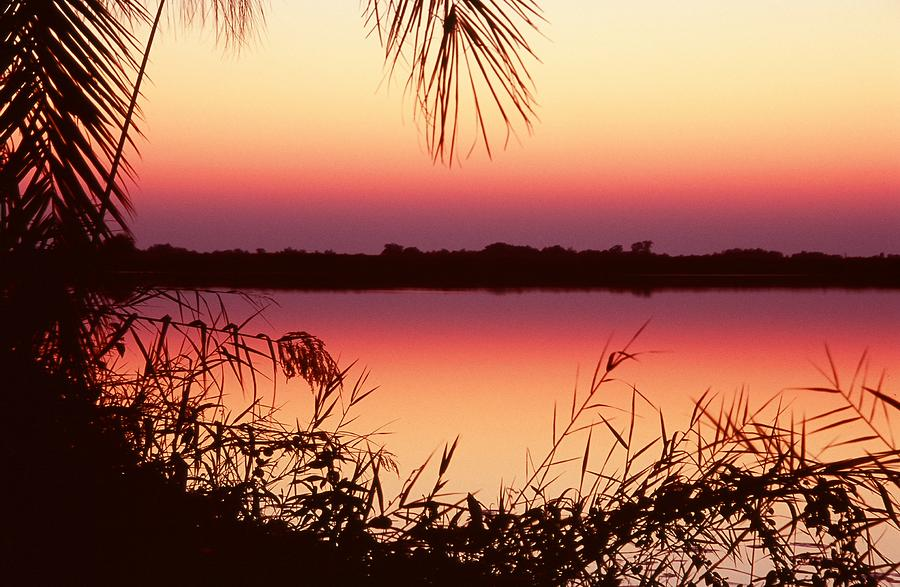 River Photograph - Sunrise On The Okavango Delta by Stefan Carpenter