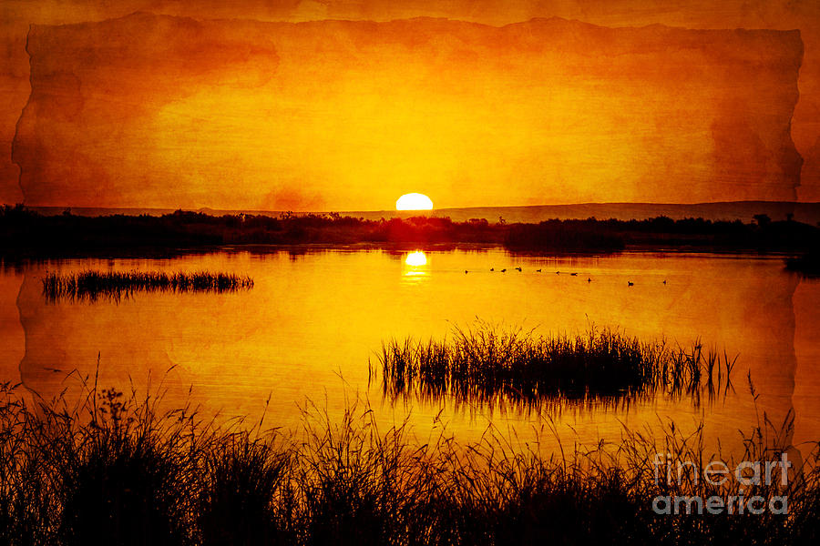 Desert Photograph - Sunrise On The Pond by Pam Vick