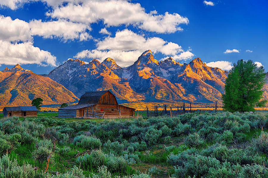 Grand Teton National Park Photograph - Sunrise On The Tetons Limited Edition by Greg Norrell