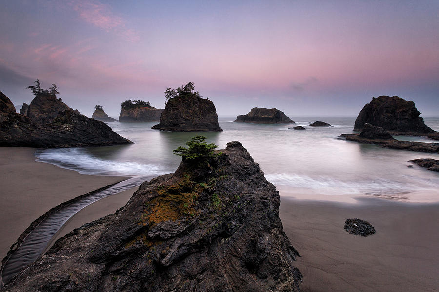 Sunrise Oregon Coast Photograph by Helminadia