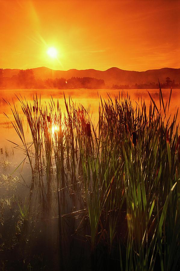 Color Image Photograph - Sunrise Over A Misty Pond by Richard Nowitz