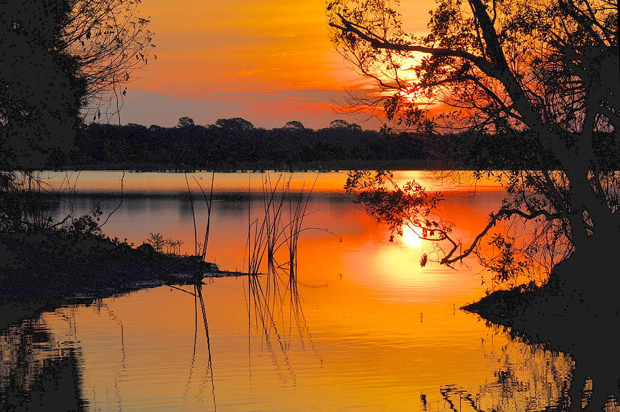 Landscape Photograph - Sunrise Over Orlando Wetlands by AnnaJo Vahle