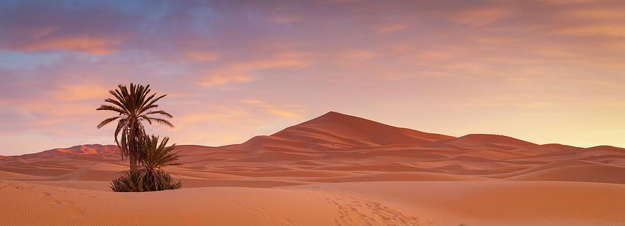 Panoramic Photograph - Sunrise Over The Majestic Erg Chebbi by Douglas Pearson