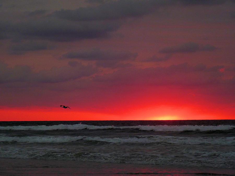 Sunrise Photograph - Sunrise Pink by JC Findley