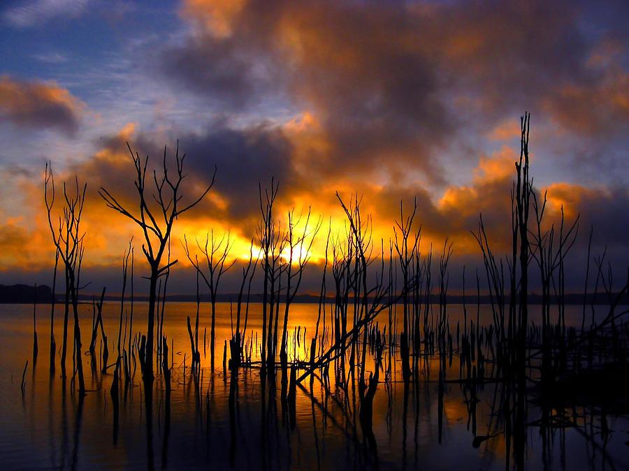 Sunrise Photograph - Sunrise by Raymond Salani III