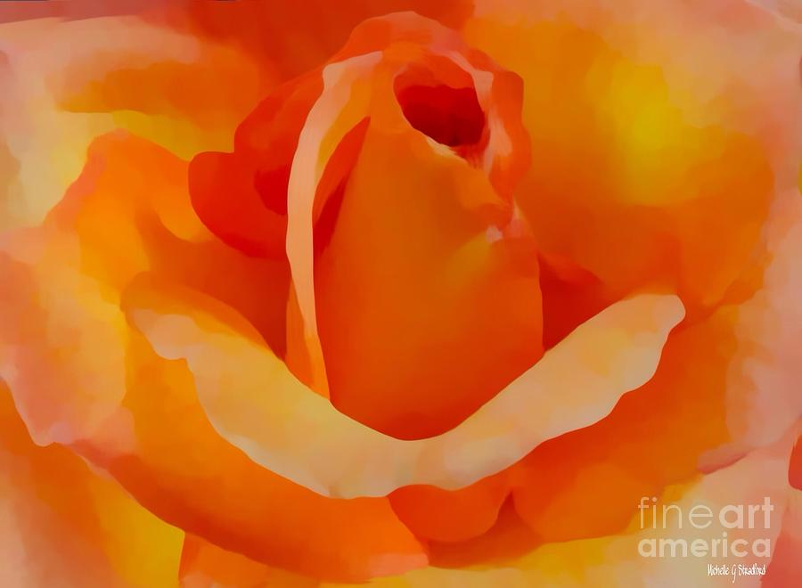 Sunrise Rose by Michelle Stradford