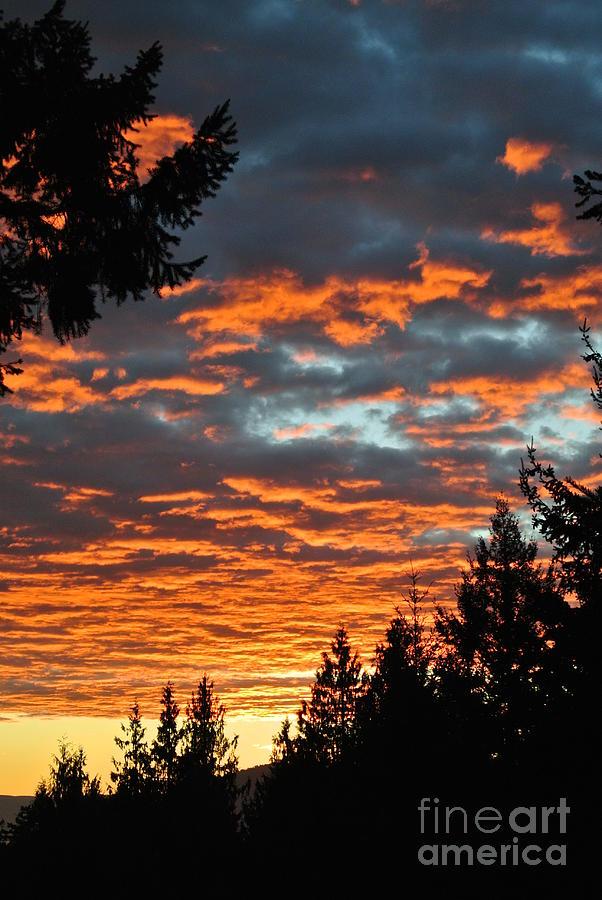 Sunset 1- Pender Island by Sharron Cuthbertson
