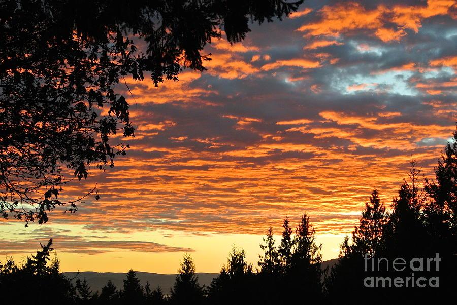 Sunset 2 - Pender Island by Sharron Cuthbertson