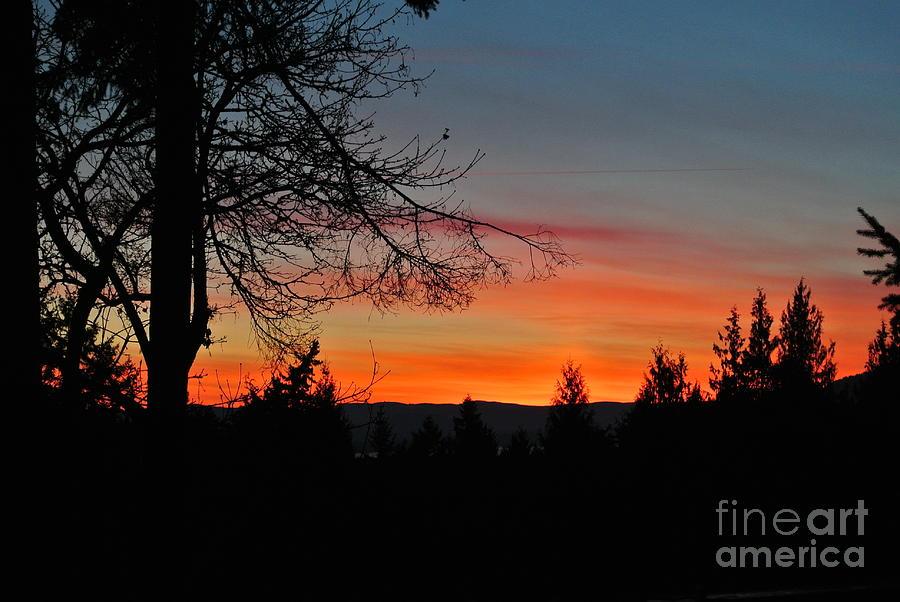 Sunset 3 - Pender Island by Sharron Cuthbertson