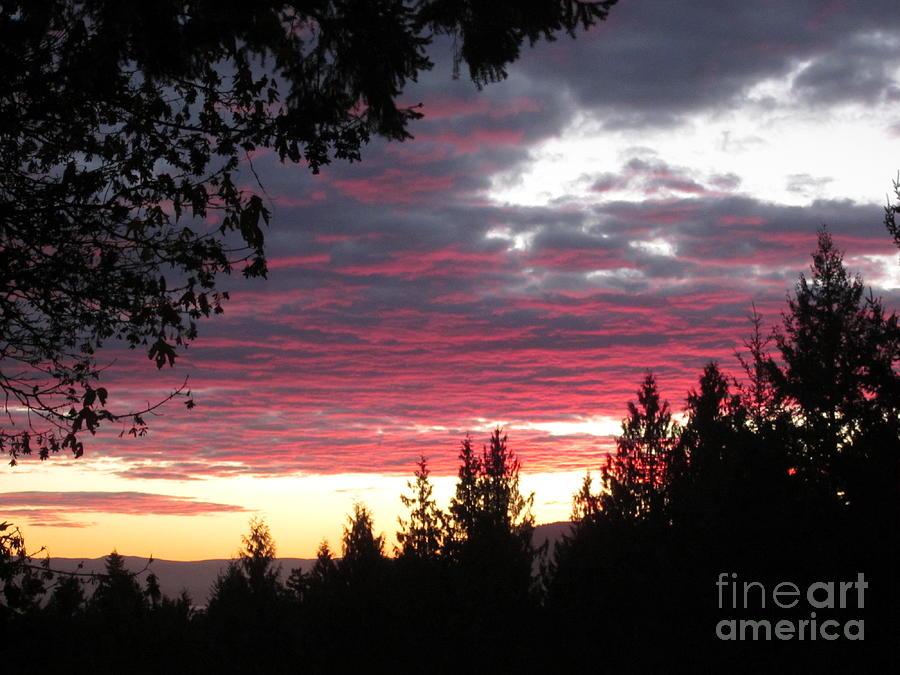 Sunset 4 - Pender Island by Sharron Cuthbertson