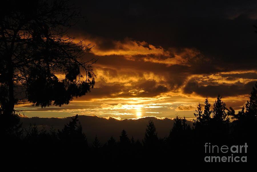 Sunset 5 - Pender Island by Sharron Cuthbertson