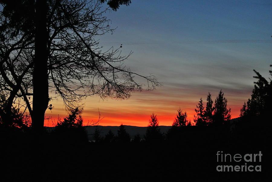 Sunset 6 - Pender Island by Sharron Cuthbertson