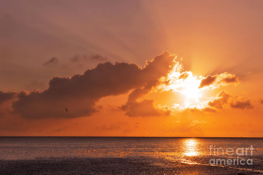 North Sea Photograph - Sunset by Angela Doelling AD DESIGN Photo and PhotoArt