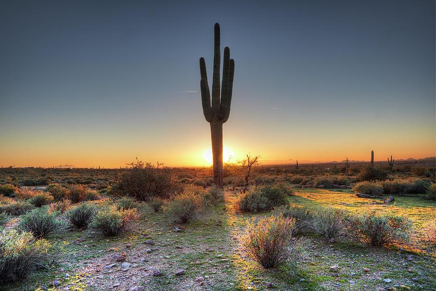 Sunset At Desert Photograph by Tonic Photo Studios