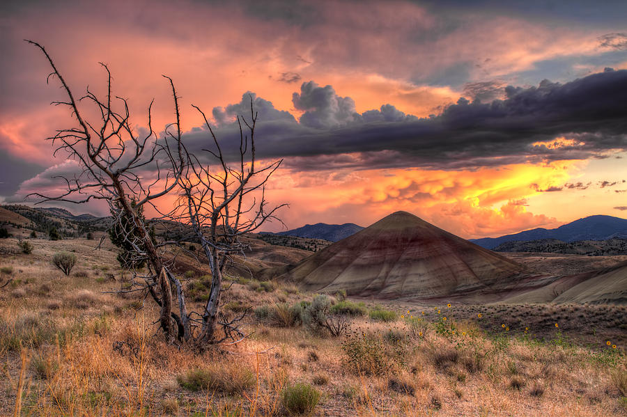 Sunset Photograph - Sunset at Painted Hills in Oregon by David Gn