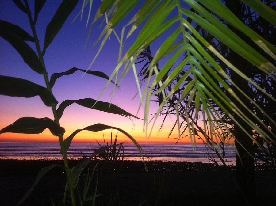 Sunset Photograph - Sunset At Sano Onofre by Paul Carter