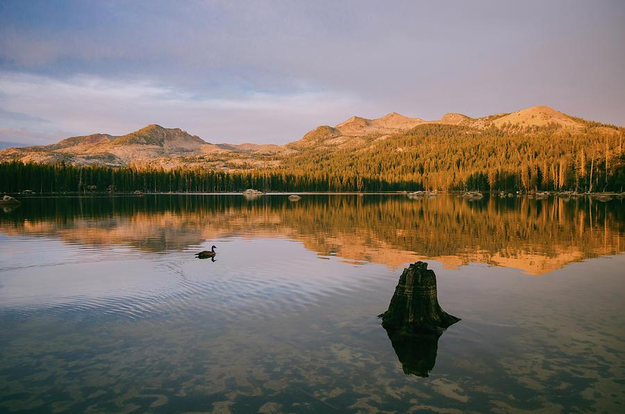 Sunset At Wrights Lake Near Lake Tahoe Photograph by Steve Hymon