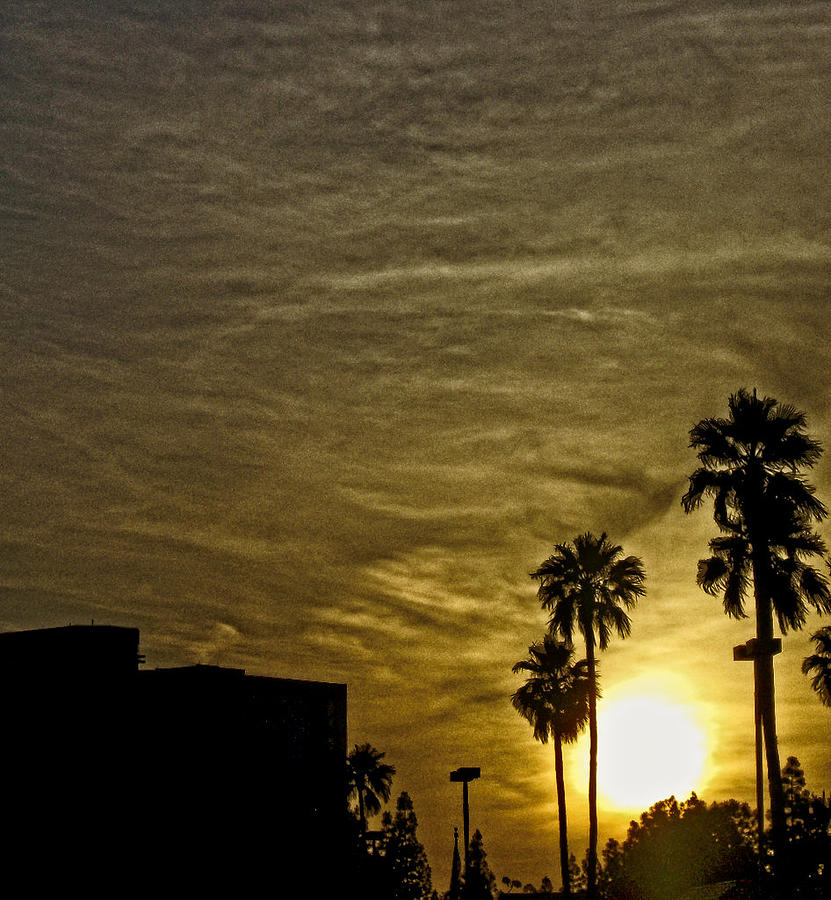 Sunset Clouds Photograph by Marquis Crumpton