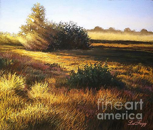 Sunlight Painting - Sunset by Deb LaFogg-Docherty
