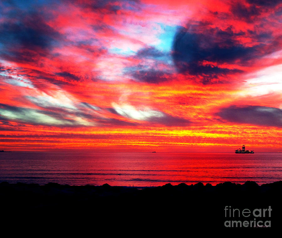 Sunset Dolphin Beach Cape Town South Africa Photograph By Charl Bruwer