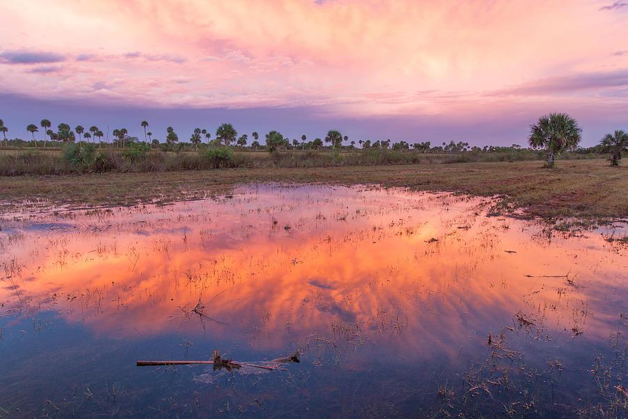 Sun Photograph - Everglades Afterglow by Doug McPherson