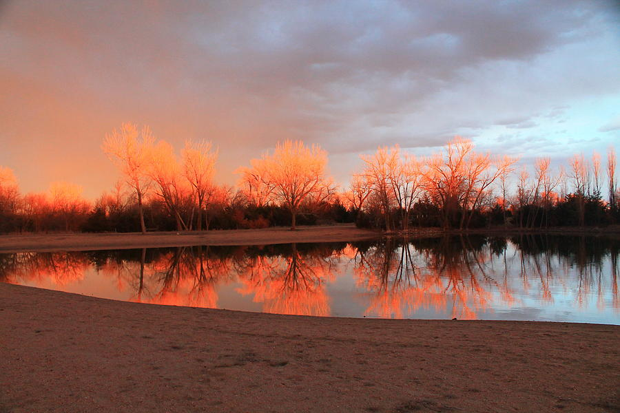 Sunset Photograph - Sunset Fire by Alicia Knust