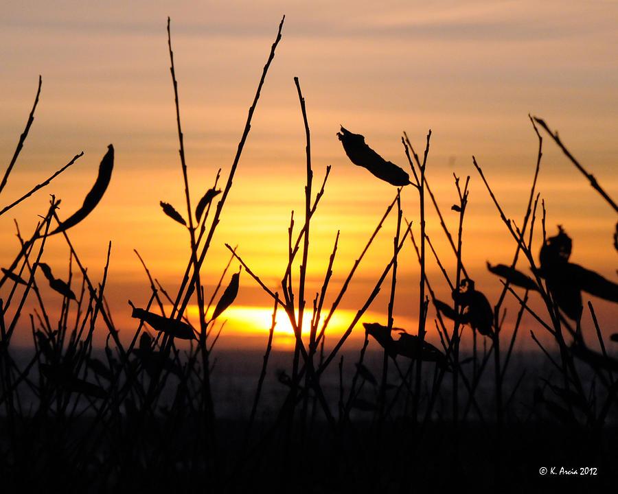 Sunset in Half Moon Bay by Ken Arcia