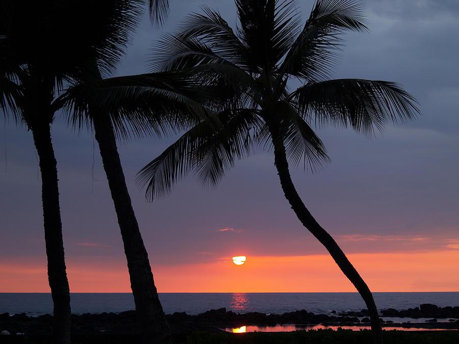 Tropical Photograph - Sunset In Hawaii by Athala Carole Bruckner