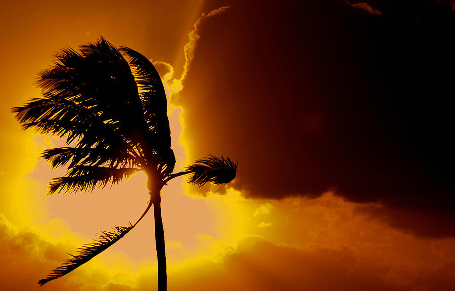 Bahamas Photograph - Sunset In Long Island by Victor Minca