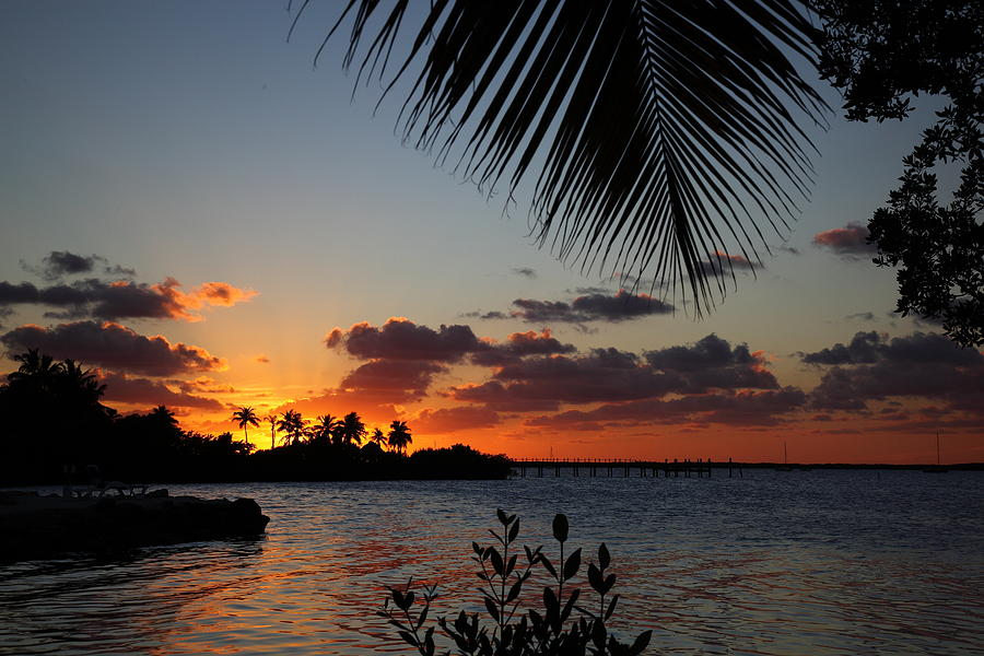 Sunset Photograph - Sunset In Paradise by Michelle Wiarda
