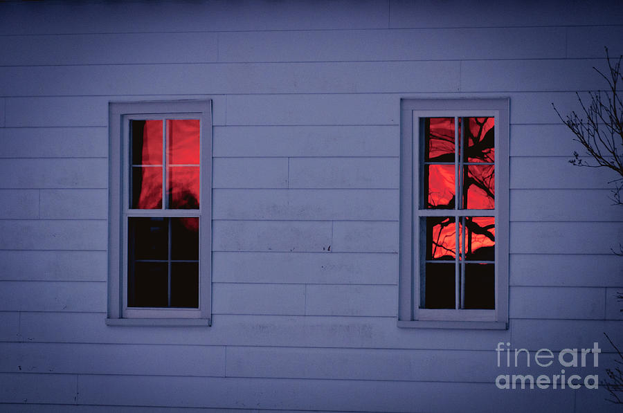 Tree Photograph - Sunset In The Windows by Cheryl Baxter