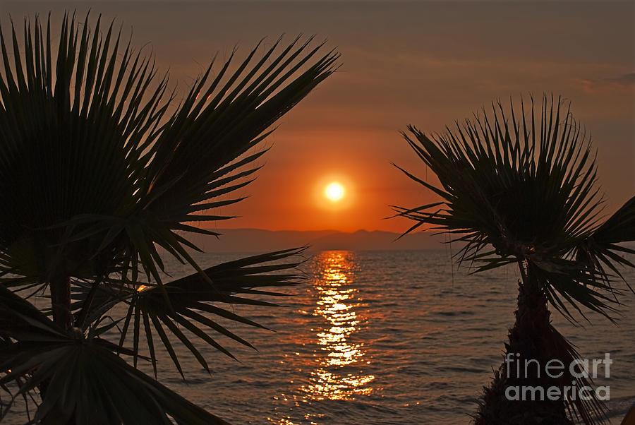 Background Pyrography - Sunset by Jelena Jovanovic