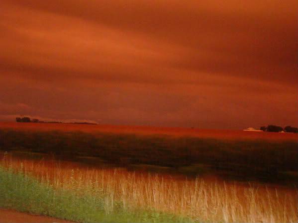 Sunset Photograph - Sunset by Arielle Cunnea