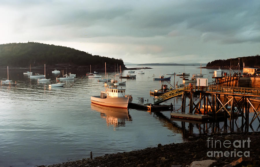 Bay Photograph - Sunset On Mount Desert Island Maine by Thomas Marchessault