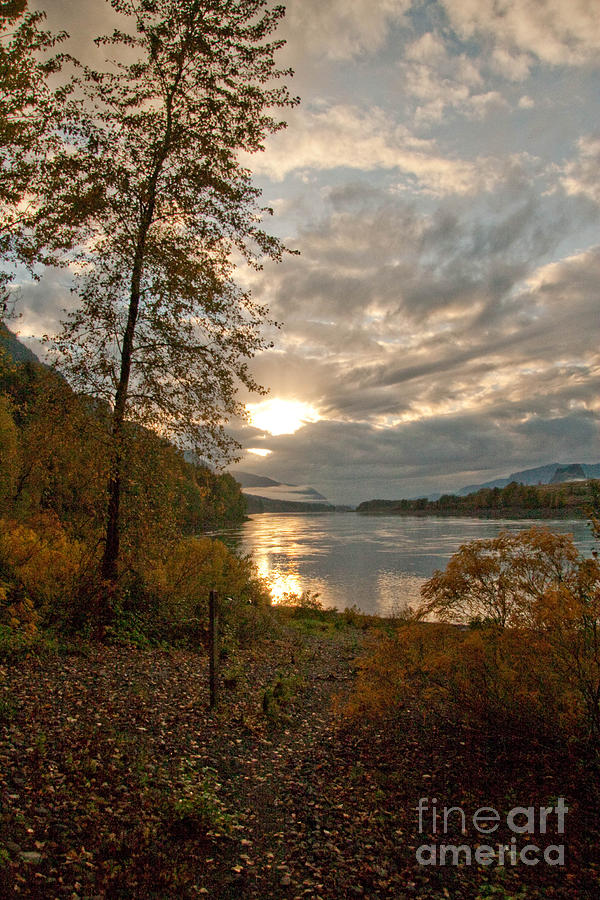 Fall Photograph - Sunset On The Columbia by Cari Gesch